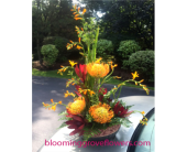 BGF0066 in Buffalo Grove IL, Blooming Grove Flowers & Gifts
