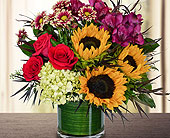 Harvest Sun - Deluxe in Dallas TX, In Bloom Flowers, Gifts and More
