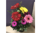 Gerb Garden in Spruce Grove AB, Flower Fantasy & Gifts