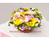 GFG2072 in Buffalo Grove IL, Blooming Grove Flowers & Gifts