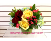 GFG2599 in Buffalo Grove IL, Blooming Grove Flowers & Gifts