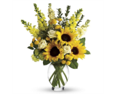 Here Comes the Sun in Grand Rapids MN, Shaw Florists