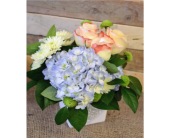 Blue Bayou in Nashville TN, Emma's Flowers & Gifts, Inc.