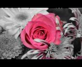 Desinger in Tulsa, Oklahoma, Burnett's Flowers & Designs