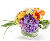 Spring Fiesta in Fort Worth TX, Greenwood Florist & Gifts