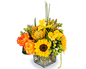 Sunburst in Fort Worth TX, Greenwood Florist & Gifts
