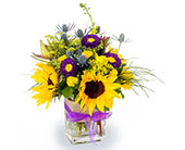 Sunshine & Smiles in Fort Worth TX, Greenwood Florist & Gifts