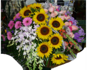 Casket Spray- Summer Groups of Color in Islip NY, Flowers by Chazz