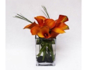 MINI AUTUMN CALLA LILY�S  in Bellevue WA, CITY FLOWERS, INC.