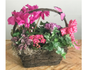 Basket of Color by Ferrari in Santa Cruz CA, Ferrari Florist