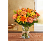 Fields of Europe� for Fall in Manchester MD, Main St Florist Of Manchester, LLC