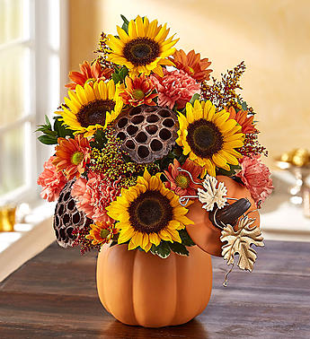 Pumpkin n� Posies� in Ormond Beach FL, Simply Roses
