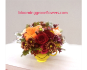 GFG3008 in Buffalo Grove IL, Blooming Grove Flowers & Gifts