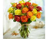 Rose Elegance Premium Autumn Roses in Pittsburgh PA, Eiseltown Flowers & Gifts