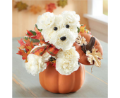 a-DOG-able� for Fall in Richmond VA, Flowerama