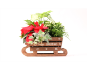 Happy Holidays Sleigh in Grimsby ON, Cole's Florist Inc.