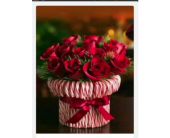 CANDY CANE CENTERPIECE WITH ROSES in Norwood PA, Norwood Florists