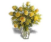 Stein Rose Special in Burlington NJ, Stein Your Florist
