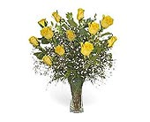 Stein Dozen Yellow Roses in Burlington NJ, Stein Your Florist