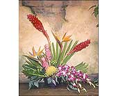 Artistic Tropical Flower Arrangment in The Woodlands TX, Botanical Flowers and Gifts
