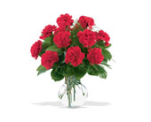12 Red Carnations in Charleston IL, Noble Flower Shop