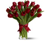 Evergreen Floral, Inc., Paramus, New Jersey - Spring Tulips Deluxe - Red, picture