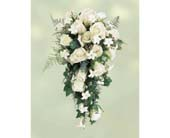Bridal Bouquet in Norristown, Pennsylvania, Plaza Flowers