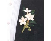 Boutonniere in Greenville SC, Greenville Flowers and Plants