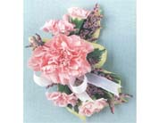 Corsage in Rocky Mount NC, Flowers and Gifts of Rocky Mount Inc.