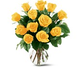12 Yellow Roses in Wichita KS, Tillie's Flower Shop