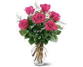 6 Hot Pink Roses in Paramus NJ, Evergreen Floral, Inc.