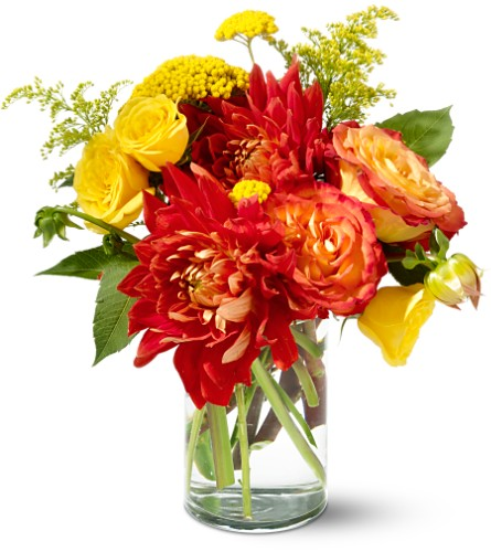 Teleflora's Dazzling Dahlias in Bend OR, All Occasion Flowers & Gifts