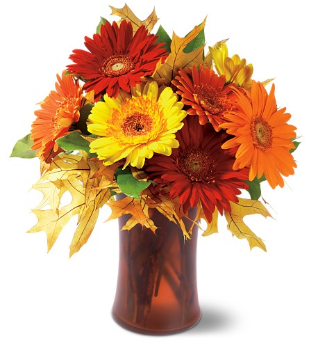 Autumn Gerberas in Penetanguishene ON, Arbour's Flower Shoppe Inc