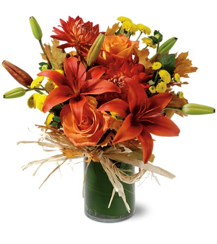 Orange Zest in Poplar Bluff MO, Rob's Flowers & Gifts