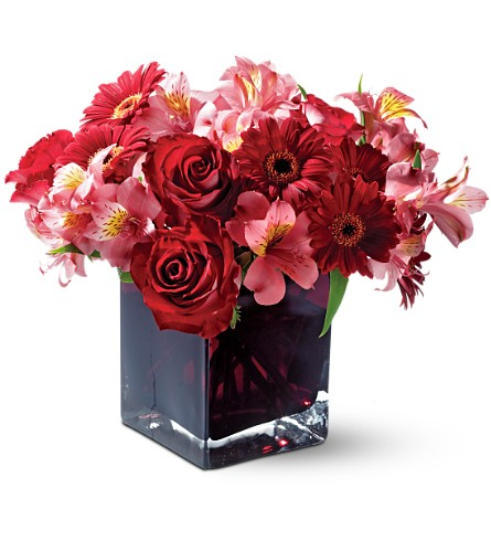 Teleflora's Wild Berry in San Francisco CA, Fillmore Florist