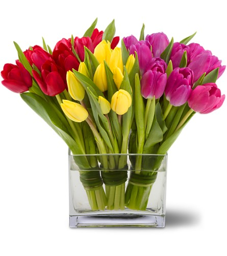 Teleflora's Tulips Together in Kennebunk ME, Blooms & Heirlooms ��