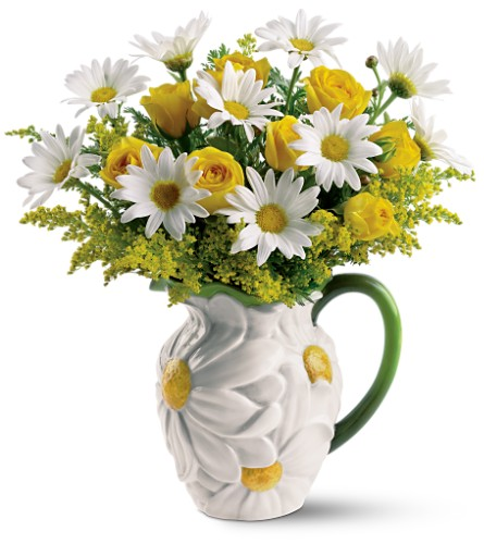 Teleflora's Darling Daisy Bouquet in Oklahoma City OK, Array of Flowers & Gifts