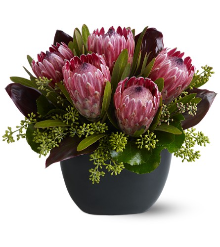 Positively Protea in Washington DC, Palace Florists