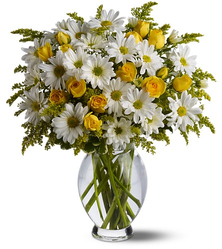 Teleflora's Daisy Days Deluxe in Hendersonville TN, Brown's Florist