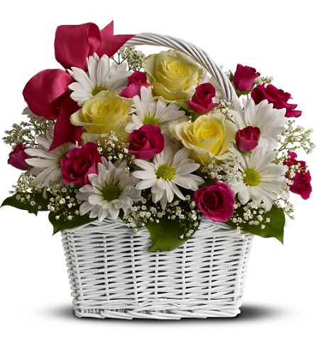 Daisy Dreams Basket in usa-send-flowers NJ, Stanley's America's Florist & Gifts