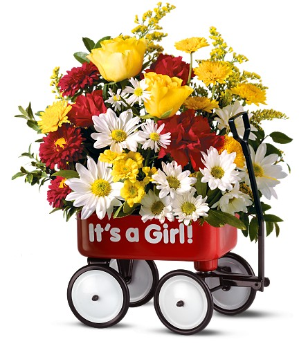 Teleflora's Baby's First Wagon - Girl in Baltimore MD, Raimondi's Flowers & Fruit Baskets