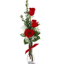 Classic Red Rose Bud Vase with Babies Breath in Perrysburg & Toledo OH  OH, Ken's Flower Shops