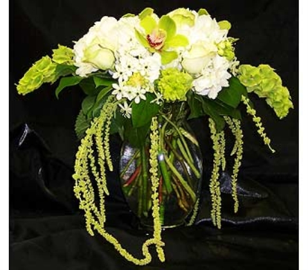 Green Delight in Kirkland WA, Fena Flowers, Inc.