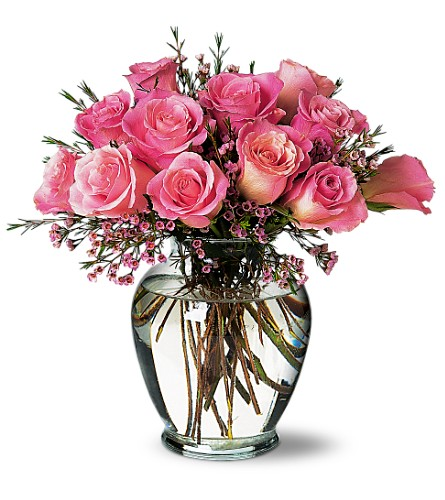 A Pretty Pink Dozen in Longmont CO, Longmont Florist, Inc.