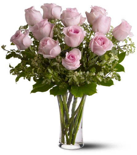 A Dozen Pink Roses Local and Nationwide Guaranteed Delivery - GoFlorist.com