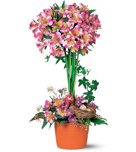 Alstroemeria Topiary in Laurel MD, Rainbow Florist & Delectables, Inc.