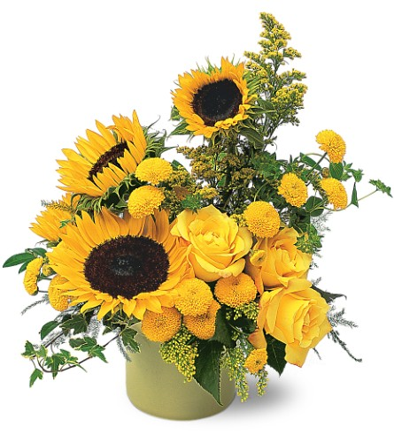 A Pot of Sunflowers in Rutland VT, Hawley's Florist