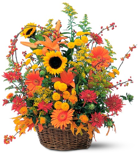 Majestic Fall in Inver Grove Heights MN, Glassing Florist