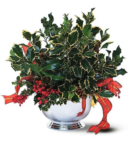 Wedding Flowers Milford Ct : Holly bowl in milford ct beachwood florist