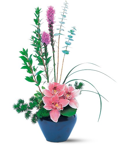Orchid Cheer in New York NY, New York Best Florist